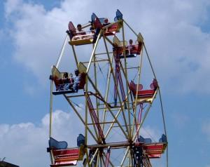 12 Seat Ferris Wheel DSCF0004
